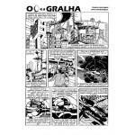 Gralha_02-600x600